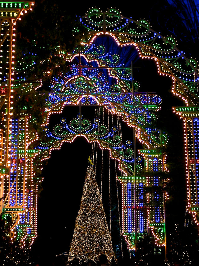 Things to do in Singapore - Christmas Wonderland at Gardens by The Bay things to do in singaporeThings to do in Singapore – Christmas Wonderland at Gardens by The Bay75