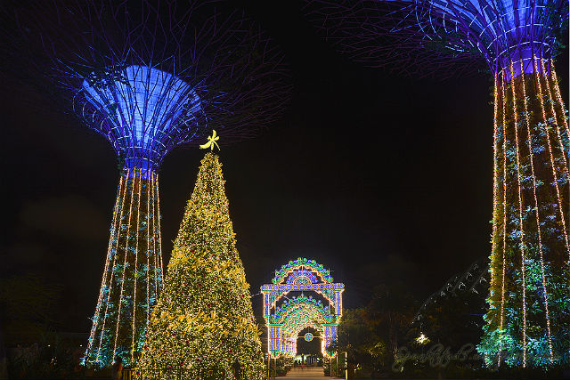Things to do in Singapore - Christmas Wonderland at Gardens by The Bay things to do in singaporeThings to do in Singapore – Christmas Wonderland at Gardens by The Bay9