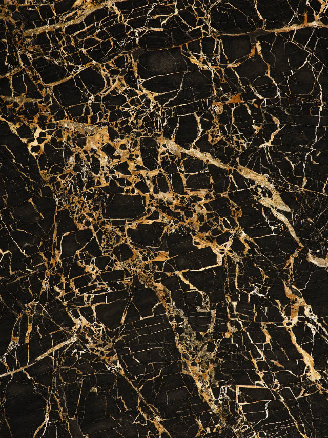 Rich Gold Marble  Rich Gold Marble portoro gold 02