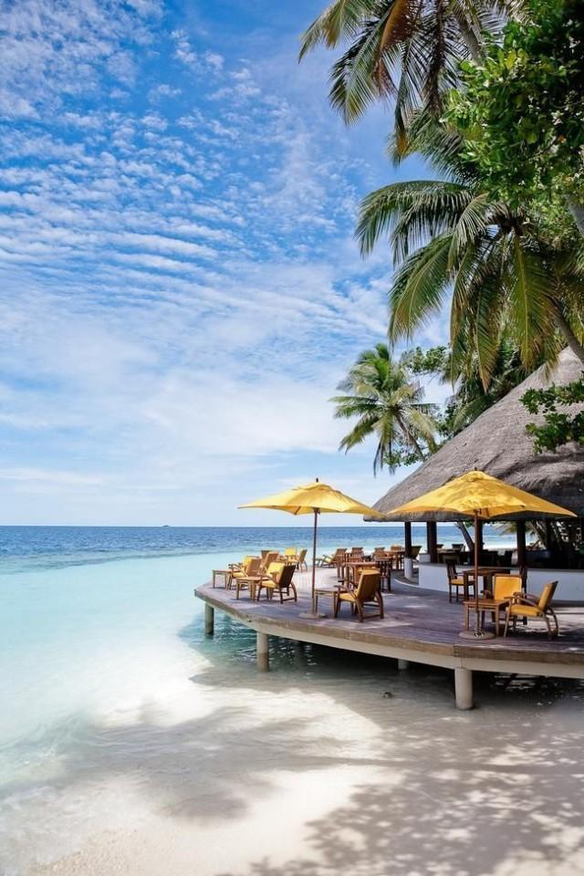 Beach Bar: An Irresistible Summer Treat