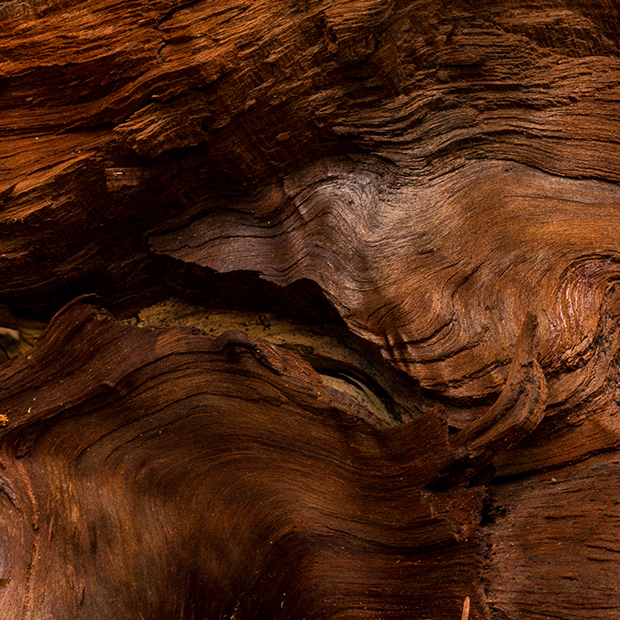 GOING-ESCENCIAL-NATURAL-TEXTURES-wood  GOING ESSENTIAL: overwhelming NATURAL TEXTURES GOING ESCENCIAL NATURAL TEXTURES wood