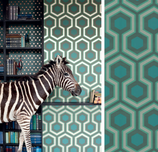 Wallpaper Ideas to Embellish your Home  Wallpaper Ideas to Embellish your Home amazing wallpaper zebra and turquoise