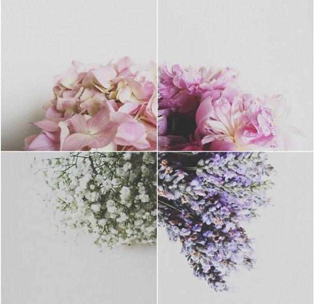 4 flower collage home decor Mood Board: Summer Flowers Color Inspiration in Your Home Decor Flower Mood Board collage four