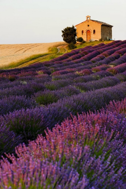 Provençal Country House Life, Style and Inspiration