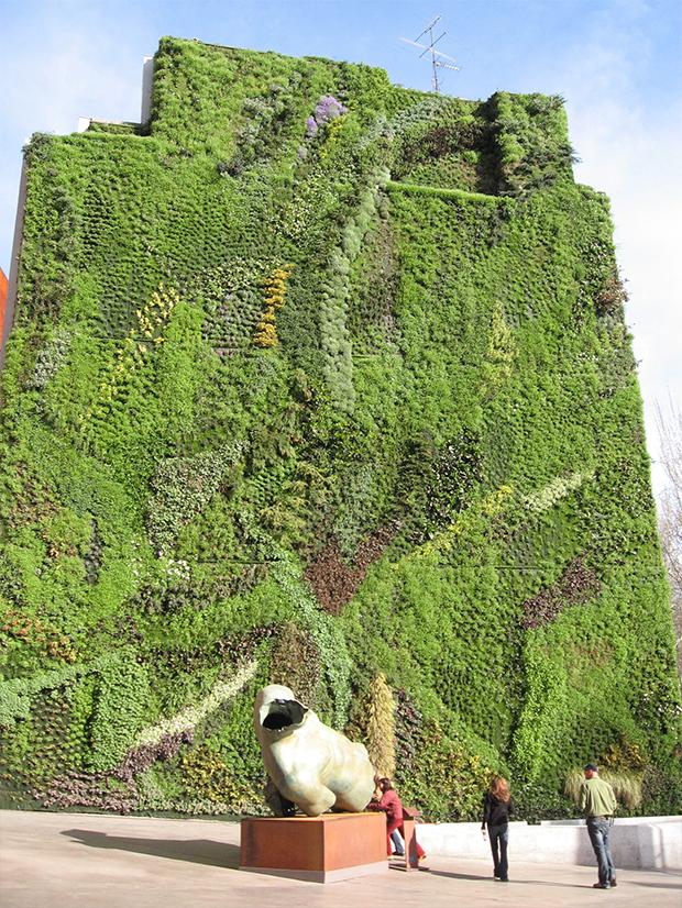 vertical-gardens-1 vertical gardens Eyes on the wall: breathtaking vertical gardens vertical gardens 1