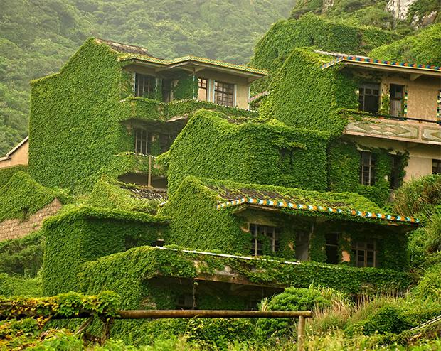 vertical-gardens-11 vertical gardens Eyes on the wall: breathtaking vertical gardens vertical gardens 11