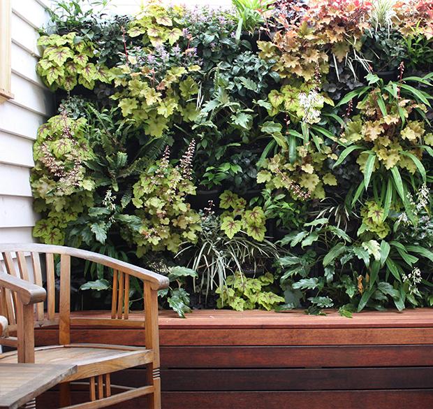 vertical-gardens-4 vertical gardens Eyes on the wall: breathtaking vertical gardens vertical gardens 4