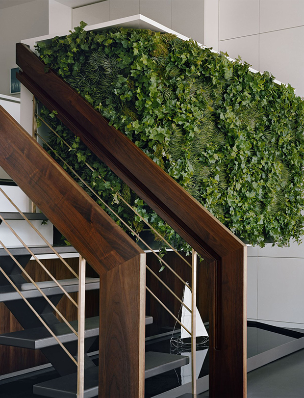vertical-gardens-6 vertical gardens Eyes on the wall: breathtaking vertical gardens vertical gardens 6