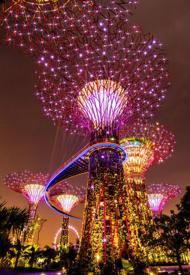 Singapore Inspiration: City in a Garden in Singapore Cover Gardens by the bay