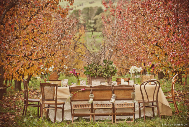 UNUSUAL THKSGVNG 9 thanksgiving dinner Unusual Table set decor ideas for Thanksgiving dinner UNUSUAL THKSGVNG 9