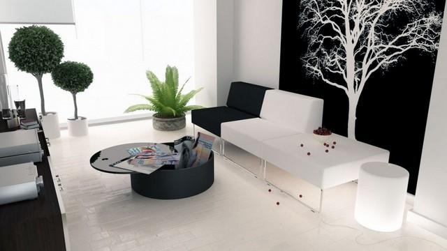 How To Create Beautiful Black And White Interiors