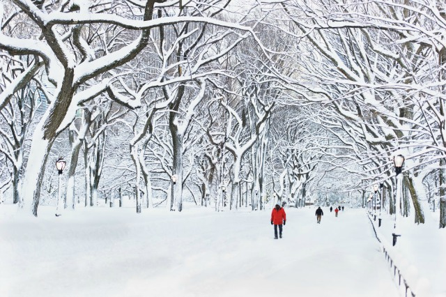 10 Dreamy Winter Destinations For Every Snow Lover winter destinations 9 Dreamy Winter Destinations For Every Snow Lover central park