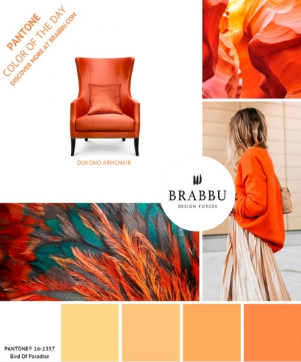 A Week In Colors: Five Color Trends To Add To Your Home Decor III