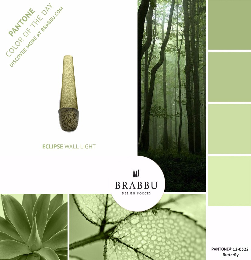 A Week In Colors: Four Color Trends To Add To Your Home Decor VIII: Butterfly home decor A Week In Colors: Four Color Trends To Add To Your Home Decor VIII Butterfly