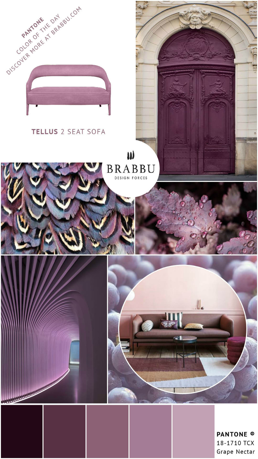 A Week In Colors: Five Color Trends To Add To Your Home Decor XI |home decor, color trends, modern interior design #colortrends #interiordesign #homedecor  home decor A Week In Colors: Five Color Trends To Add To Your Home Decor XI Grape Nectar