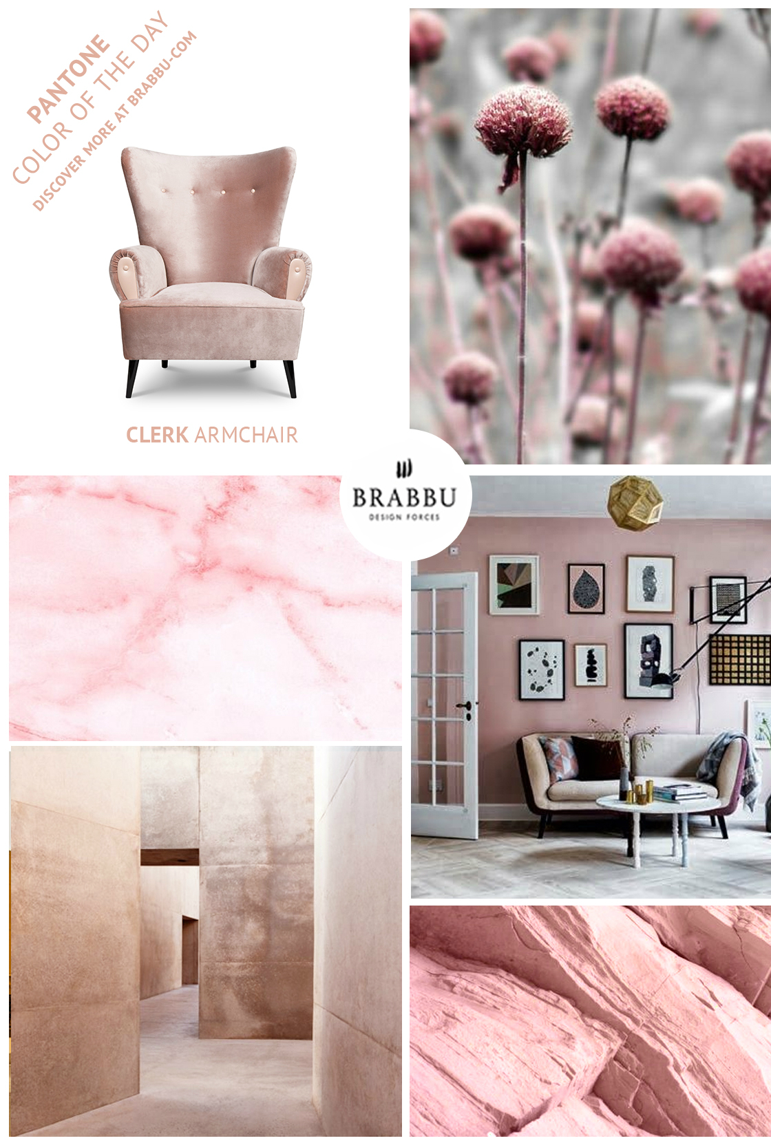 Pink Paint Shade: one of the 2018 color trends
