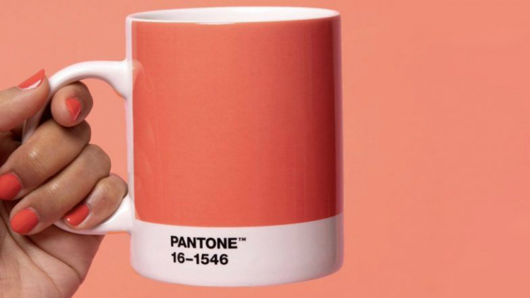 The new pantone color of 2019 living coral - 2019 color of the year ...