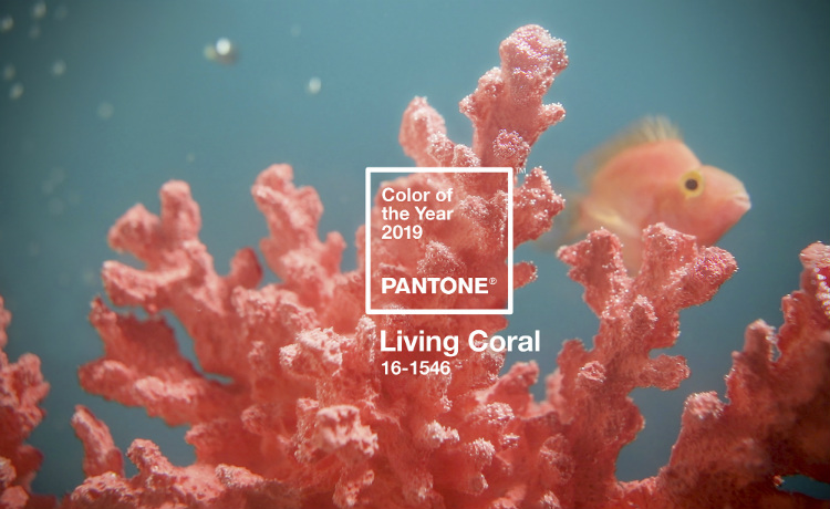 Pantone Color of 2019: Living Coral pantone color of 2019 The New Pantone Color of 2019: Living Coral Pantone Color of the Year