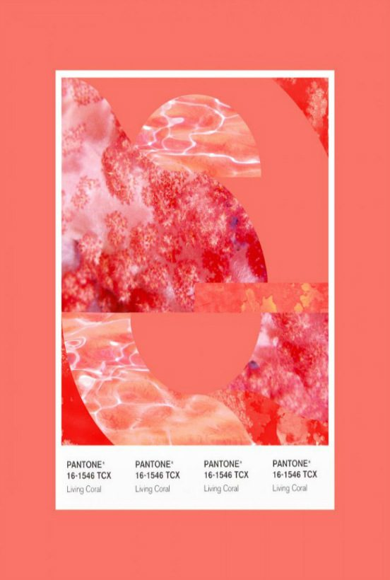 pantone color of 2019 The New Pantone Color of 2019: Living Coral The New Pantone Color of 2019 Living Coral 552x820
