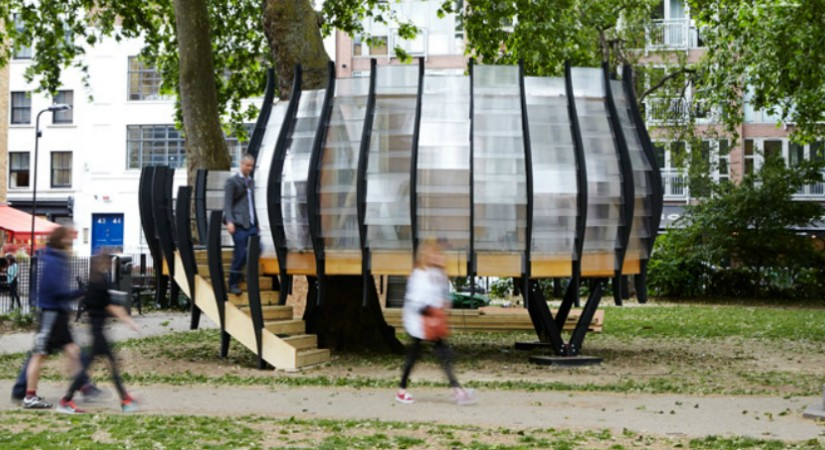 An office was created around a tree tunk in LondonAn office was created around a tree tunk in London 825x450