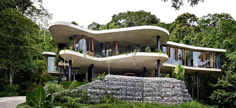 Architect Jesse Bennett elevates planchonella house within the Australian rainforest Architect Jesse Bennett elevates planchonella house within the Australian rainforestUntitled 2