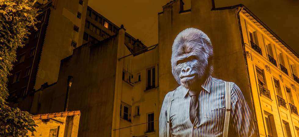 A safari of smartly-dressed wildlife on the streets of Paris projected by Julien Nonnon A safari of smartly-dressed wildlife on the streets of Paris projected by Julien NonnonUntitled 14