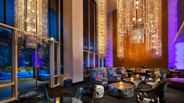 w, where to stay, best hotels Luxury HotelsTHE BEST LUXURY HOTELS TO STAY IN DALLAS3 w where to stay best hotels