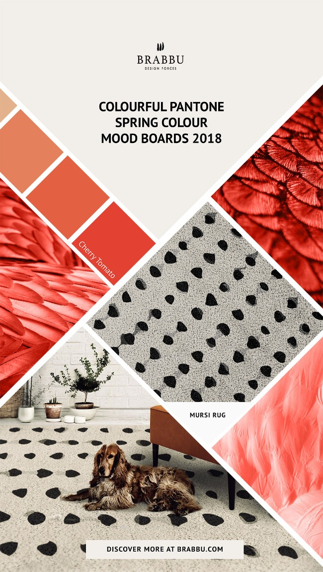 Spring Colour Trends 2018 A Pop of Colour With BRABBU's Rugs_Cherry Tomato Spring Colour TrendsSpring Colour Trends 2018: A Pop of Colour With BRABBU's RugsSpring Colour Trends 2018 A Pop of Colour With BRABBUs Rugs Cherry Tomato