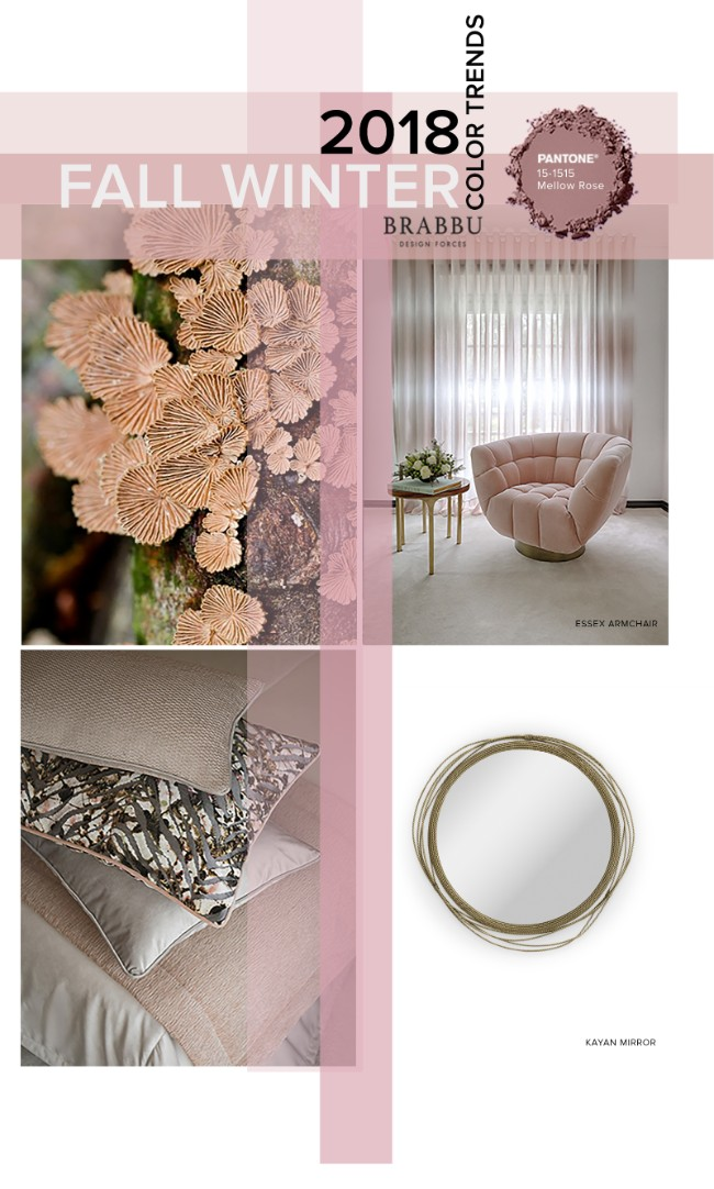 Fall Winter 2018_The Colours Unveiling New Home Decor Trends_Mellow Rose home decor trendsFall Winter 2018: The Colours Unveiling New Home Decor TrendsFall Winter 2018 The Colours Unveiling New Home Decor Trends Mellow Rose
