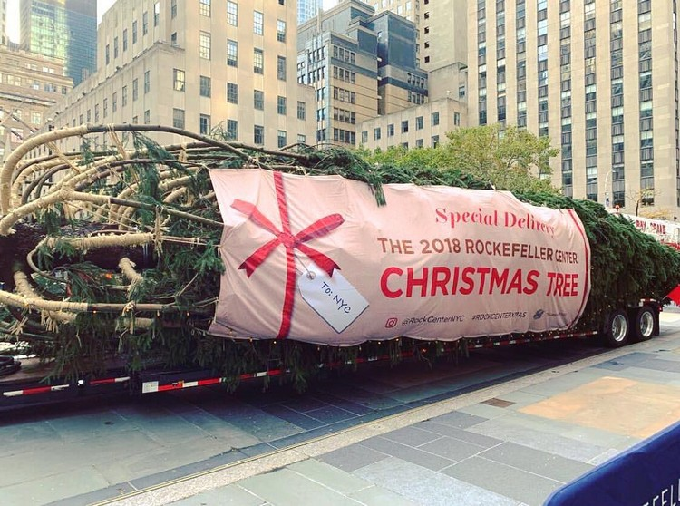 ROCKEFELLER CENTER CHRISTMAS TREE 2018 rockefeller center christmas treeROCKEFELLER CENTER CHRISTMAS TREE 201844538822 2019886551634584 7628677699923822881 n