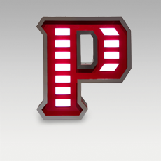 P Letter from Graphic Collection by DelightFULL