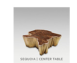 SEQUOIA | CENTER TABLE by BRABBU