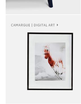 CAMARGUE aka CAVA-LONNY   Digital Art by BRABBU