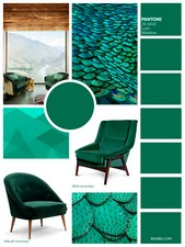 Lush Meadow is a luxurious green, rich and elegant, vibrant and sophisticated, that displays brightness and depth.
