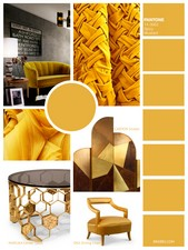Spicy Mustard is an exotic and vibrant colour that create unexpected and unusual ambiences.